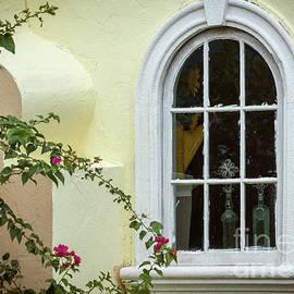 Garden Window by Todd Blanchard