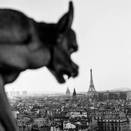 Gargouilles de Paris. by Cyril Jayant