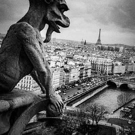 Gargoyle of paris. by Cyril Jayant