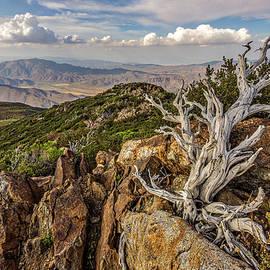 Garnet Peak - Peter Tellone