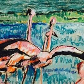 Andrea Torraca - Gathering of Flamingo