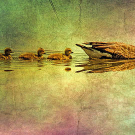 Geese and babies textured by Geraldine Scull