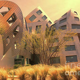 Gehry Brain Clinic LV  by Chuck Kuhn