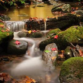 Gentle Cascades of Autumn  by T-S Photo Art