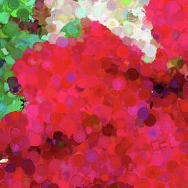Geranium Circles Abstract by Judi Suni Hall