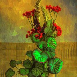 Geraniums in a Vase by Jennifer Stackpole