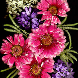 Lyn  Perry - Gerbera Bouquet l