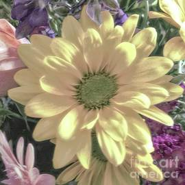 Gerbera Daisy Bouquet by Luther Fine Art