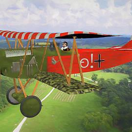 Tommy Anderson - German Fokker D.VII In Flight  over France - Oil