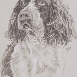 German Spaniel in Graphite by Barbara Keith
