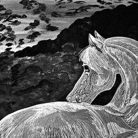 Ghost Horse in Black and white by Barbara Donovan
