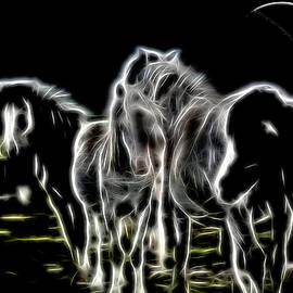 Ericamaxine Price - Ghost Horses - Sketch