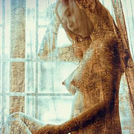 Ian Gledhill - Girl in The Window