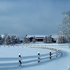 Tracey Vivar - Glacier Park Lodge, Winter View
