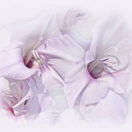 Gladiola Flowers Lavender Pastel by Jennie Marie Schell