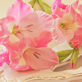 Sandra Foster - Gladiolas In Pink