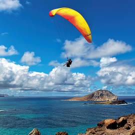 Gliding Over Makapuu by Susan Rissi Tregoning