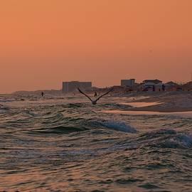 Tamra Lockard - Gliding The Beach
