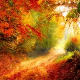 Joy of Life Art Gallery - Glorious Autumn Forest Pathway