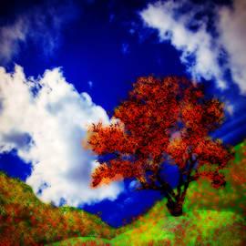 Kathy Franklin - Glorious Spring