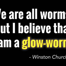 Glow Worm - Greg Joens