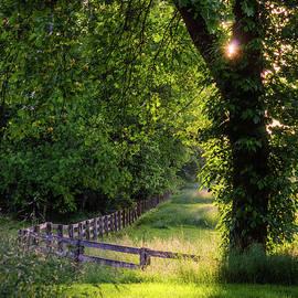 Glowing Green by Jim Love