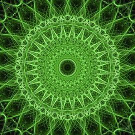 Glowing green mandala by Jaroslaw Blaminsky