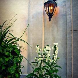 Glowing Lantern And Flowers by Patricia Strand