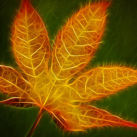Amy Jackson - Glowing Maple Leaf