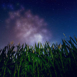 Dan Sproul - Glowing Milky Way Over Corn Field