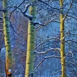 Janice Rae Pariza - Glowing Winter Aspen