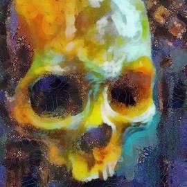Scott Smith - Goethe Skull