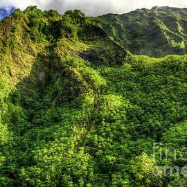 Reid Callaway - Stairway To Heaven Hawaiian Landscape Hiking Trail Art