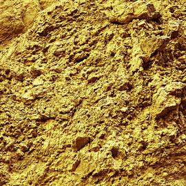 Evgeniya Lystsova - Gold Natural Texture