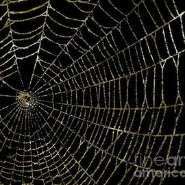 Gold Spider Web Fashion Halloween - Mindy Sommers