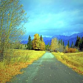 Tara Turner - Gold Trees and Blue Skies in Banff