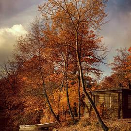 Jaroslaw Blaminsky - Golden autumn in the park
