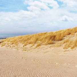 Kathi Mirto - Golden Beach Walk