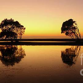 Howard Ferrier - Golden dawn