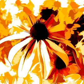 Debra Lynch - Golden Glow Of Summer