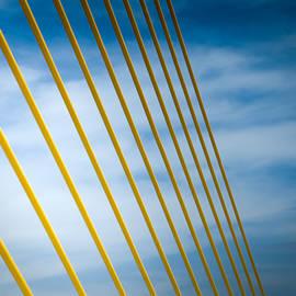 GOLDEN GLOW of TAMPA by Karen Wiles