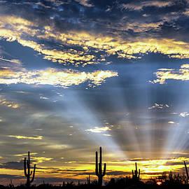 Golden God Rays to the Desert Sky  by Saija Lehtonen