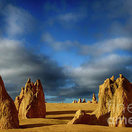 Golden Hour Nambung Desert Australia 2 by Bob Christopher