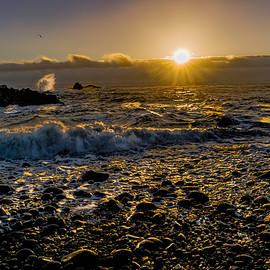 Marty Saccone - Golden Light Seascape