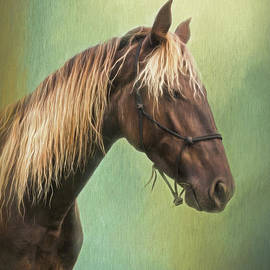 Golden Mane by Sharon McConnell