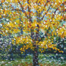 Jim Rehlin - Golden Maple