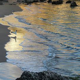 Georgia Mizuleva - Golden Light at Praia da Rainha - Queens Beach - in Cascais Portugal