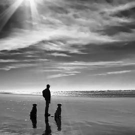 Golden Retriever Dogs End of the Day Black and White by Jennie Marie Schell