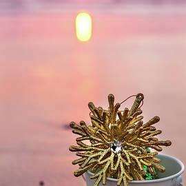 Evgeniya Lystsova - Golden Snowflake