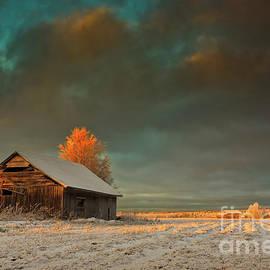 Jukka Heinovirta - Golden Sunrise On The Winter Fields
